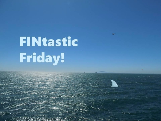 Fintastic Friday
